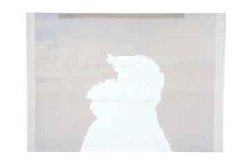 explorer_barne_glacier