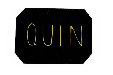 Illustrated QUIN logo