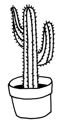 Cactus for Ezra & Edie